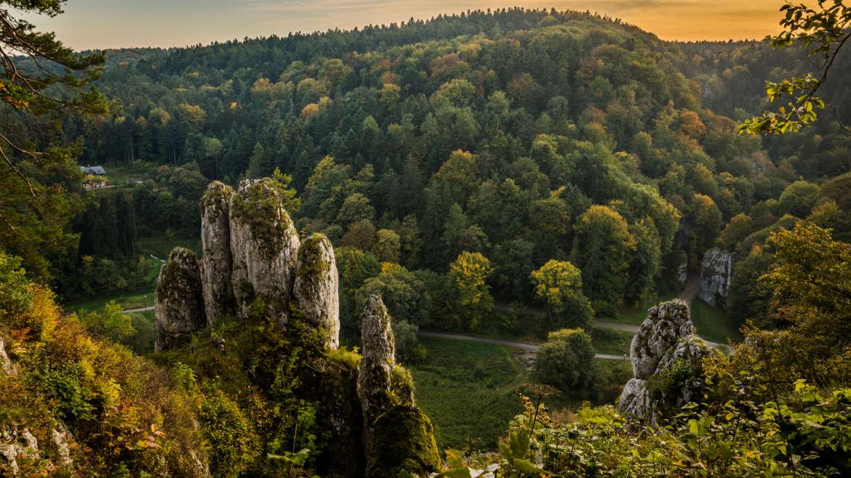 Uchwała w sprawie zmiany systemu tworzenia parków narodowych przyjęta